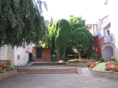Musée Thulay Musée Beurnier-Rossel