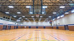Localisez Facilement les Salles Multisports et Gymnases de Mirepeisset