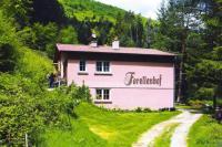 gite Wangenbourg Engenthal Holiday flats Forellenhof Dabo - ELS05027-CYB