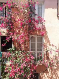 Résidence de Vacances Hyères Blue Palm Apartment