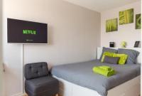 Appart Hotel Mulhouse Le Wilson - Studio en face de la Gare