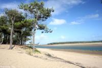 Location de vacances Talmont Saint Hilaire Le Cottage Golf