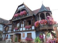 gite Kintzheim Gîte Au Vigneron