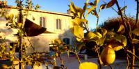 Le-Mas-Montredon Arles