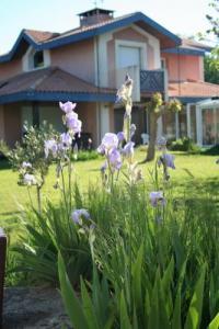 Chambre d'Hôtes Aquitaine villa helianthe