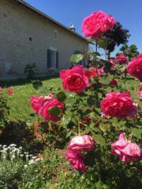 Chambre d'Hôtes Poitou Charentes Chez Jumaine