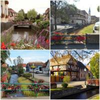 Chambre d'Hôtes Alsace Sci du Muhlbach