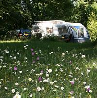 Terrain de Camping Mailly la Ville Sites et Paysages Location en Mobil home au Camping Au Bois Joli