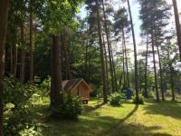 Terrain de Camping Alsace Location en Mobil home au Camping Osenbach