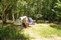 Terrain de Camping Mornans Camping Le Grand Bois