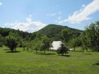 Terrain de Camping Midi Pyrénées Camping des vignes