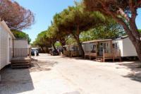 Terrain de Camping Toulon Camping La Bergerie Plage