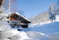 gite Chamonix Mont Blanc Chalet Chatel