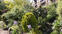 tourisme Fleurines Chambres d'hôtes du Jardin Francais