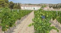 Chambre d'Hôtes Languedoc Roussillon Chambre d'hôtes de Saint-Obre