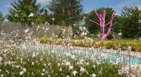 tourisme Saint Pey de Castets Au Cerisier Rose