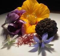 Idée de Sortie Sainte Eulalie d'Ans Les Jardins Gourmands de la Tourouge