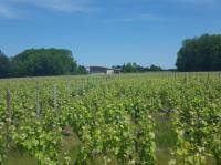 Divin Loire-Credit-Aude-Clavier