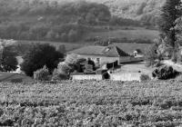 Idée de Sortie Le Montat Domaine de Lacoste
