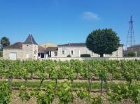 Chateau Piconat-Credit-EARL-COMIN-GUICHENEY
