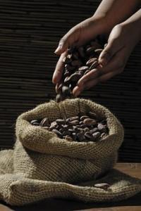 Idée de Sortie Horsarrieu Chocolaterie PONS