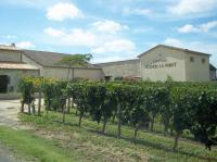 Idée de Sortie Lussac Château Canon La Forêt - Vignobles Mio et Fils