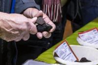 Truffière expérimentale-Credit-Albret-Tourisme