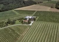 Idée de Sortie Saint Germain et Mons Vignoble de la Grande Borie