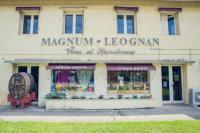 Idée de Sortie Léognan Léognan Magnum