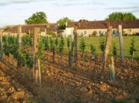 Idée de Sortie Saint Michel de Montaigne EARL Vignoble Loubery