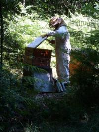 Idée de Sortie Biron Atelier miel et cuir