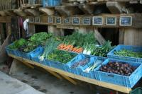 Idée de Sortie Vigeois La Couronne de mille légumes