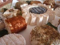 Idée de Sortie Montsalès Aux Fromages de Compostelle