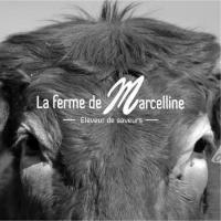 Idée de Sortie Saint Salvadou La ferme de Marcelline