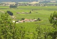 Idée de Sortie Lamotte du Rhône Domaine de Lapagnol