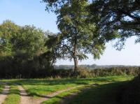 Idée de Sortie Saint Jeanvrin Circuit pédestre le sentier de Ferrières
