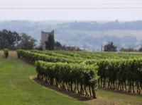 Idée de Sortie Saint Antoine de Breuilh Circuit de La Peyrute de Port Sainte-Foy et Ponchapt