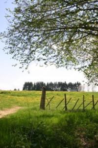 Idée de Sortie Eyzerac Voie de Vézelay Etape 2 : Thiviers-Sorges