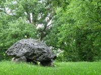 Idée de Sortie Ogeu les Bains Le Tour du dolmen à Buzy en Vallée d'Ossau