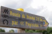Idée de Sortie Saint Jean d'Eyraud Boucle du Brandal - Sainte Foy des Vignes - Ginestet