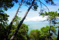 Le sentier du Lac à Maubuisson Lacanau