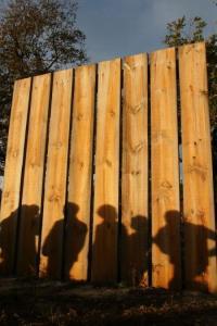 Idée de Sortie Ygos Saint Saturnin A Garein, la forêt inspiratrice