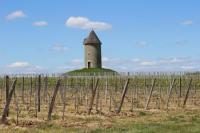 Idée de Sortie Les Lèves et Thoumeyragues Boucle locale des moulins d'Eynesse