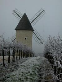 Idée de Sortie Margueron Le Moulin de Marquet, dans les vignes de Villeneuve-de-Duras