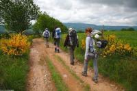 Idée de Sortie Florentin la Capelle Le GR®65 - Le chemin de Saint-Jacques de Compostelle : Étape n 4 : Golinhac - Conques