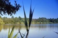 Idée de Sortie Mur de Sologne Les étangs de Sologne (circuits accompagnés)