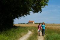 Idée de Sortie Saint Gaultier Balade à pied n63 - Le coteau aux loges de vigne