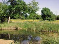 Idée de Sortie Leyme Réserve Naturelle Régionale du Marais de Bonnefont