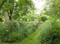 Idée de Sortie Sencenac Puy de Fourches Jardin botanique d'ALAIJE