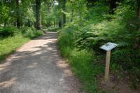 Idée de Sortie Pessac Bois de Thouars